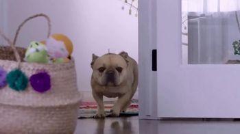 Milk-Bone TV Spot, 'Dogs Love More' - Thumbnail 2