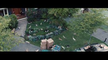 Credit Karma TV Spot, 'Bad Neighbors: Cat Lady' - 2352 commercial airings