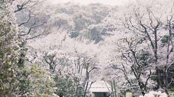VICE Golf TV Spot, 'Mount Fuji' - Thumbnail 1