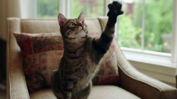 PetComfort Feeding System TV Spot, 'Raise Your Paw' - Thumbnail 3
