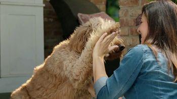 PetComfort Feeding System TV Spot, 'Raise Your Paw' - Thumbnail 8