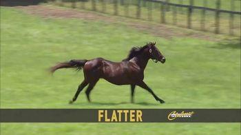 Claiborne Farm TV Spot, 'Flatter 2018' - Thumbnail 1