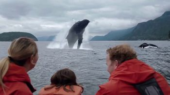 Citi AAdvantage TV Spot, 'Whale Watching' - Thumbnail 9