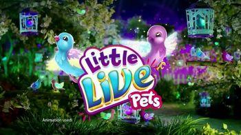 Little Live Pets Light Up Songbirds TV Spot, 'Glowing' - Thumbnail 1