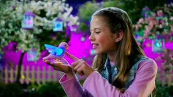 Little Live Pets Light Up Songbirds: Glowing thumbnail
