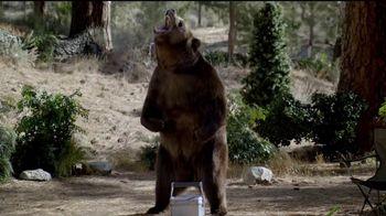 Volkswagen Memorial Day Deals TV Spot, 'Bear' Song by Grouplove [T2] - Thumbnail 3