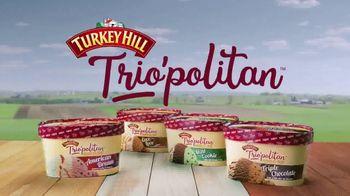 Turkey Hill Trio'politan TV Spot, 'Can't Ever Decide: Mint Cookie' - Thumbnail 10