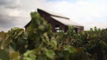 Lodi Winegrape Commission TV Spot, 'Consumed by Wine' - Thumbnail 2