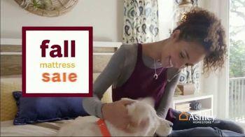 Ashley HomeStore Fall Mattress Sale TV Spot, 'Sealy & Tempur-Pedic' - Thumbnail 2