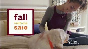 Ashley HomeStore Fall Mattress Sale TV Spot, 'Sealy & Tempur-Pedic' - Thumbnail 3