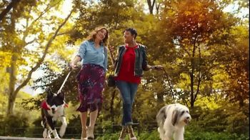 JCPenney TV Spot, 'Stand Out: Liz Claiborne' Song by Redbone - Thumbnail 2