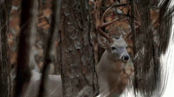 Hunter's Kloak Rut Rouser TV Spot, 'Buck Wild' - Thumbnail 5