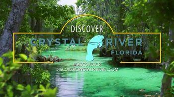 Visit Citrus TV Spot, 'Florida's Soul' - Thumbnail 2