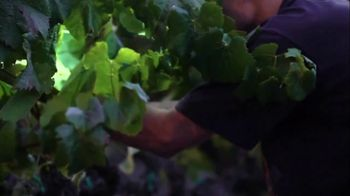Naked Wines TV Spot, 'One Thing in Common'