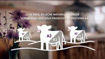 a2 TV Spot, 'Discover the Difference in a2 Milk' [Spanish]