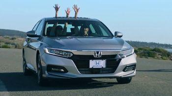 2018 Honda Accord TV Spot, 'Ask Any Honda Driver: Northern California Favorite' [T2] - Thumbnail 2