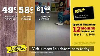 Lumber Liquidators Fall Flooring Kickoff TV Spot, 'New Hardwood: $1 Off' - Thumbnail 7