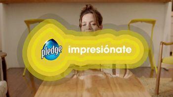 Pledge TV Spot, 'Mancha de café' [Spanish] - Thumbnail 8