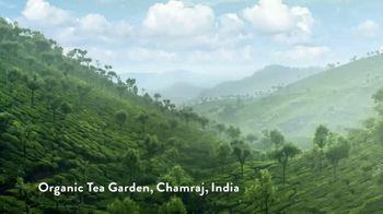 Honest Tea TV Spot, 'Honest Adventure' - Thumbnail 1