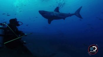 Southwest Airlines Dare to Dive Sweepstakes TV Spot, 'Shark Week' - Thumbnail 2