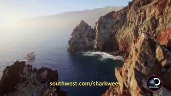 Southwest Airlines Dare to Dive Sweepstakes TV Spot, 'Shark Week' - Thumbnail 6