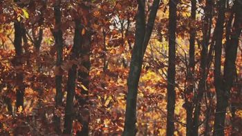 Hunters Specialties TV Spot, 'Autumn' - Thumbnail 1