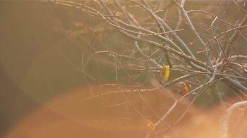 Hunters Specialties TV Spot, 'Autumn' - Thumbnail 7