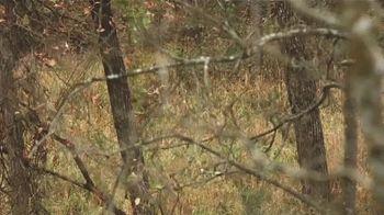 Hunters Specialties TV Spot, 'Autumn' - Thumbnail 8