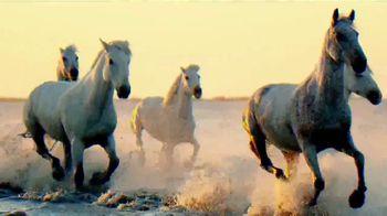 Rocket Mortgage TV Spot, 'Animal Kingdom' - 15 commercial airings