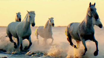 Quicken Loans Rocket Mortgage TV Spot, 'Animal Kingdom'
