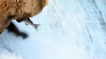 Quicken Loans Rocket Mortgage TV Spot, 'Animal Kingdom' - Thumbnail 3