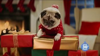 Chewy.com TV Spot, '2018 Holidays: Unbox Holiday Savings' - Thumbnail 7