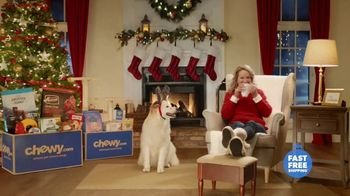 Chewy.com TV Spot, 'Holidays: The Stress of Holidays Past' - Thumbnail 9