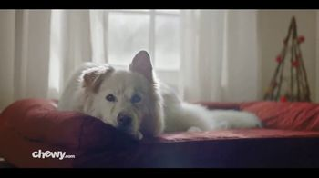 Chewy.com TV Spot, '2018 Holidays: All I Want for Christmas' - Thumbnail 7