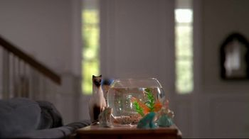 Cox Communications Panoramic WiFi TV Spot, 'Mama's House' Feat. Wild Willy - Thumbnail 7
