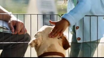 Coldwell Banker TV Spot, 'Old Dog, New Dog' - Thumbnail 6