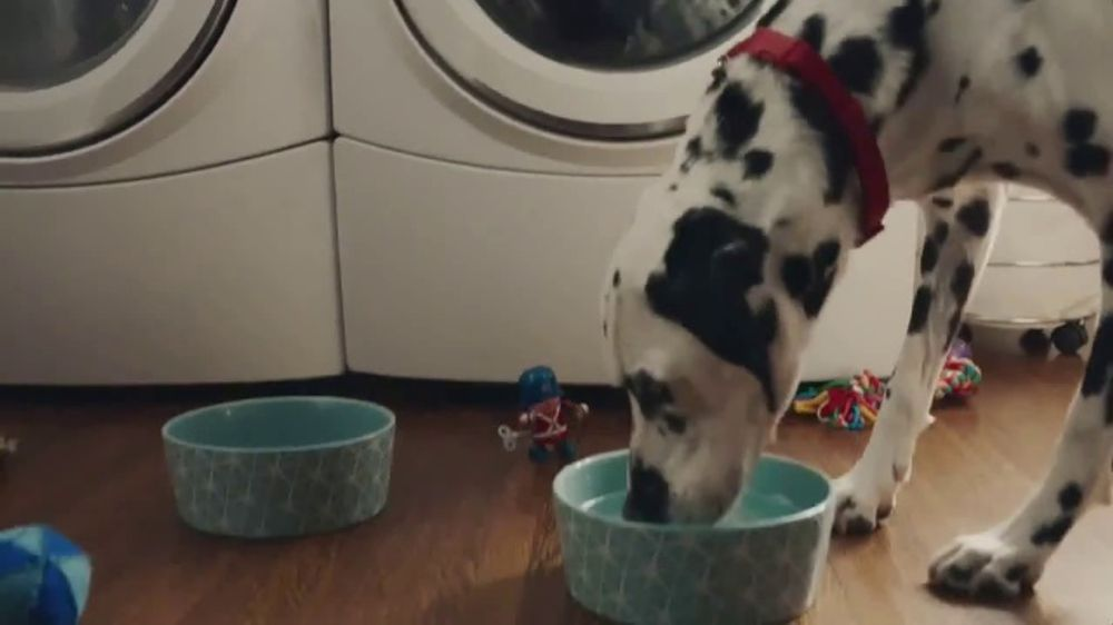 Culligan TV Commercial, 'Dogs: In-Home Water Test'