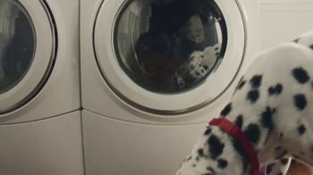 Culligan TV Spot, 'Dogs: In-Home Water Test' - Thumbnail 5