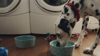 Culligan TV Spot, 'Dogs: In-Home Water Test'