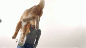 Fresh Step Clean Paws TV Spot, 'Cat on Glass' - Thumbnail 4
