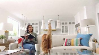 Fresh Step Clean Paws TV Spot, 'Cat on Glass' - Thumbnail 6