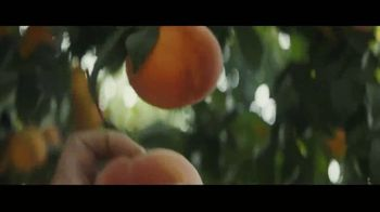 Del Monte TV Spot, 'We're Growers' - Thumbnail 5
