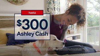 Ashley HomeStore Labor Day Mattress Sale TV Spot, 'Colchones' [Spanish] - Thumbnail 7