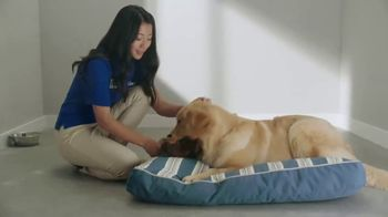PetSmart TV Spot, 'Your Journey With PetSmart by Your Side' - Thumbnail 8