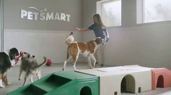 PetSmart TV Spot, 'Your Journey With PetSmart by Your Side' - Thumbnail 5
