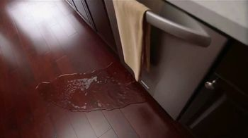 Stanley Steemer TV Spot, 'Water Restoration: Dishwasher' - Thumbnail 4