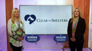 Clear the Shelters TV Spot, 'Find the Perfect Pet' Ft. Jocelyn Lamoureux - Thumbnail 1