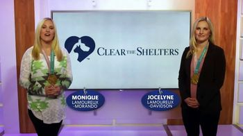 Clear the Shelters TV Spot, 'Find the Perfect Pet' Ft. Jocelyn Lamoureux - Thumbnail 9