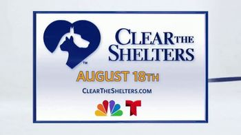 Clear the Shelters TV Spot, 'Find the Perfect Pet' Ft. Jocelyn Lamoureux - Thumbnail 4