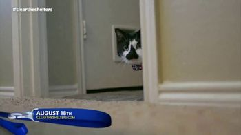 Clear the Shelters TV Spot, 'Find the Perfect Pet' Ft. Jocelyn Lamoureux - Thumbnail 5